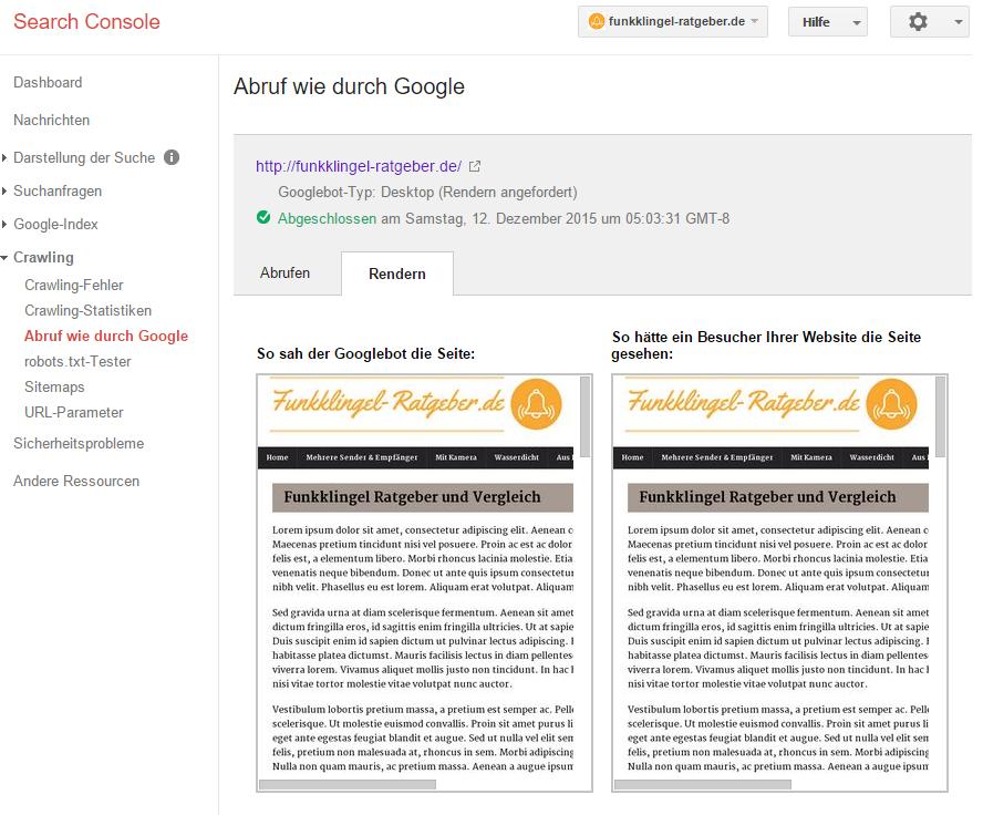 Google Search Console - Abruf wie durch Google mit Rendern